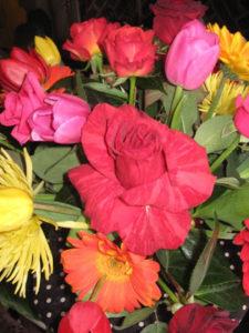 Millennium Roses